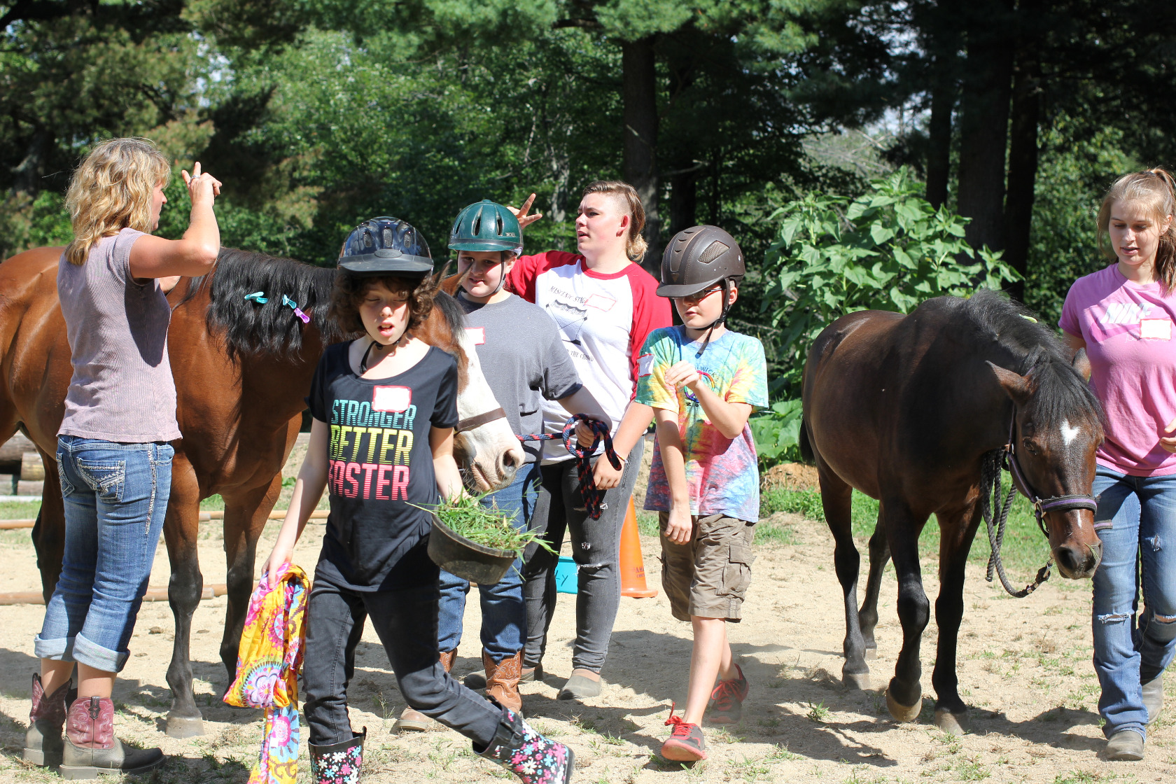 Helping people with horses equine assisted learning EAL