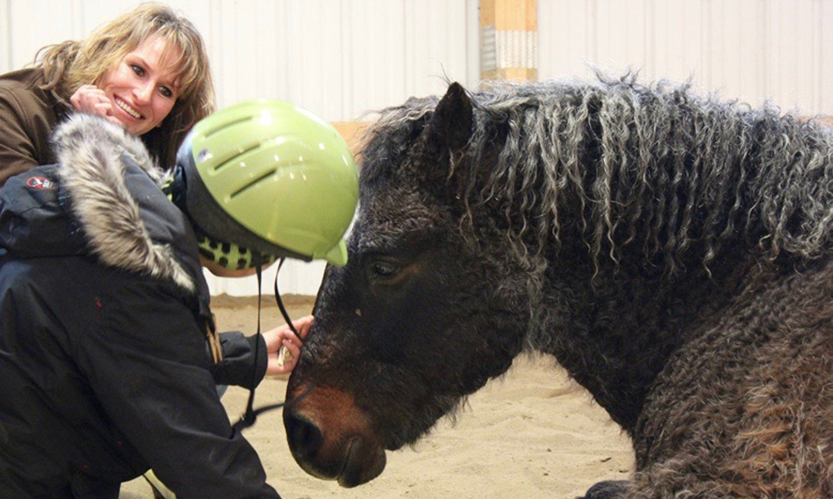 Certified Equine Assisted Learning Helping People with Horses
